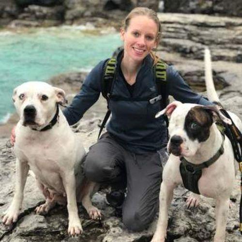 Pet Care Provider Alex V's Profile Picture