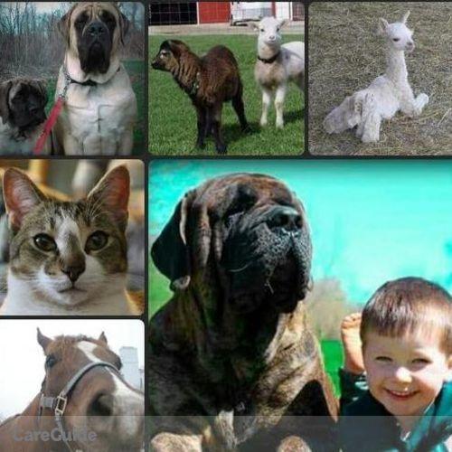 Pet Care Provider Sarah DeGriselles's Profile Picture