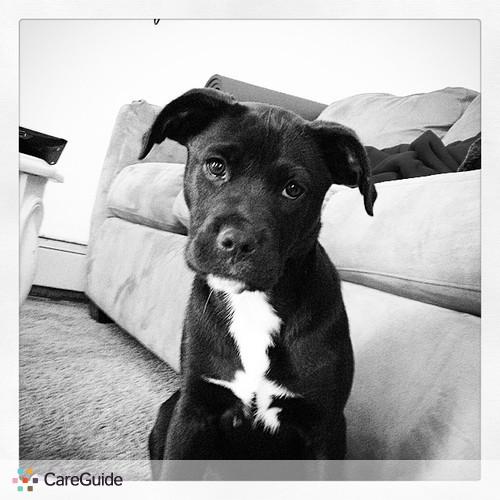 Pet Care Job Logan Spring's Profile Picture