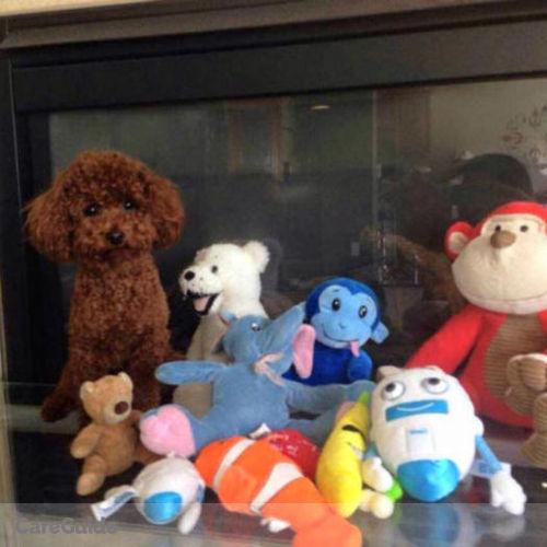 Pet Care Provider Selina Hao's Profile Picture