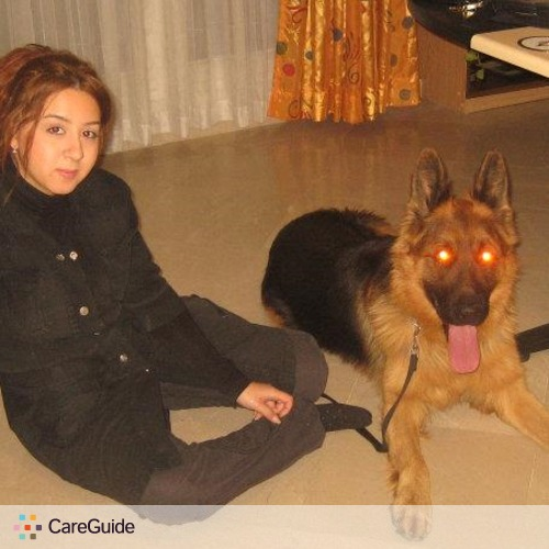 Pet Care Provider Mojgan Dadashi's Profile Picture