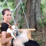 Interviewing For Bellville Dog Trainer Opportunity