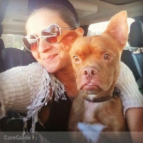 Pet Care Job Christina Gala's Profile Picture