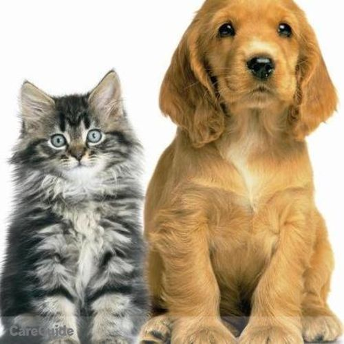 Pet Care Provider Robert P's Profile Picture