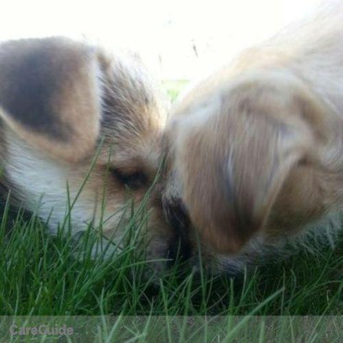 Pet Care Provider Maci LaPlant's Profile Picture