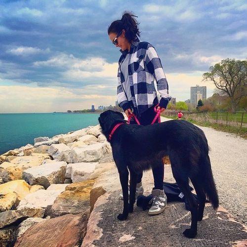 Pet Care Provider Marissa W Gallery Image 3