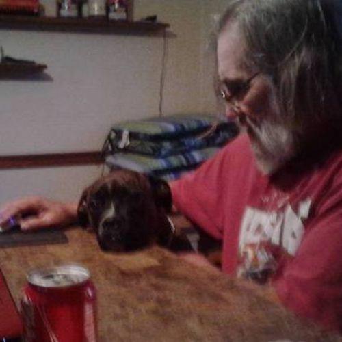 Pet Care Provider Pet Sitting/Boarding,Doggy Day Care Lurz's Profile Picture