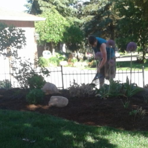 Reliable and Experienced Landscaper offering Full Landscape Services. Affordable and Dependable.
