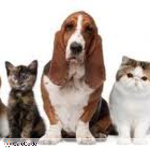 Pet Care Provider love to take care of your pet 's Profile Picture