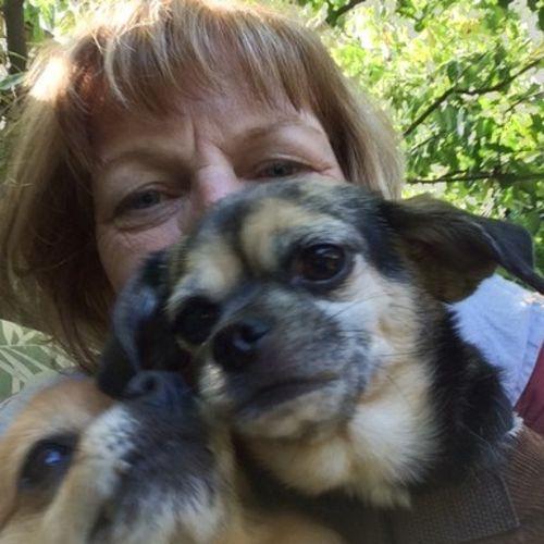 Pet Care Provider Juliette McDonald's Profile Picture