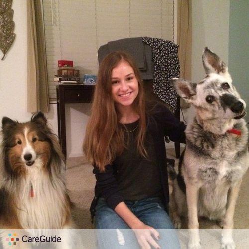 Pet Care Provider Kate Kyzrodeva's Profile Picture