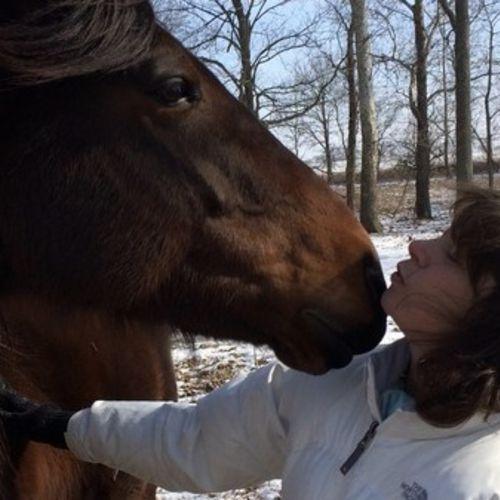 Pet Care Provider Kelly T's Profile Picture