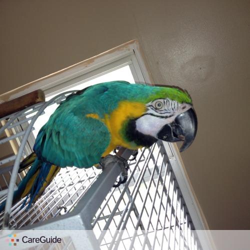Pet Care Provider Cindy Marini's Profile Picture