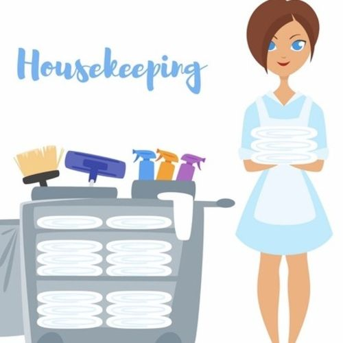 Reliable Cleaning Provider, Seeking Work!