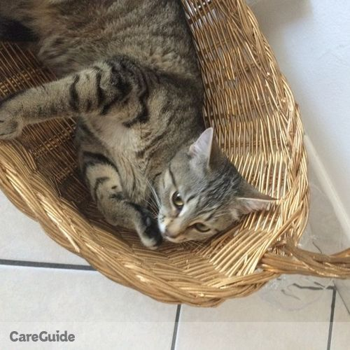 Pet Care Provider Adrian Przywara's Profile Picture
