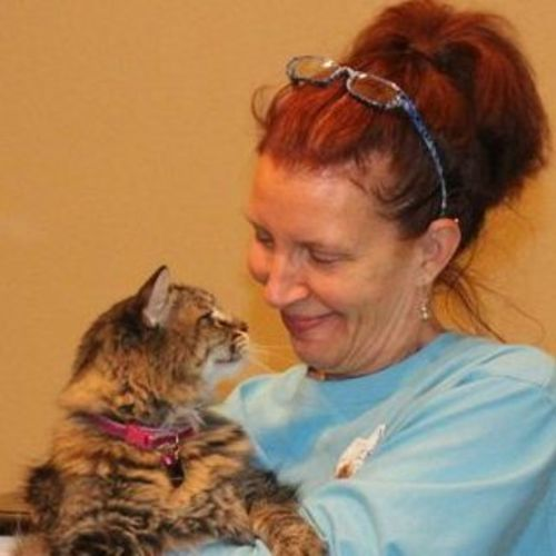 House Sitter Provider Annie Oliver's Profile Picture