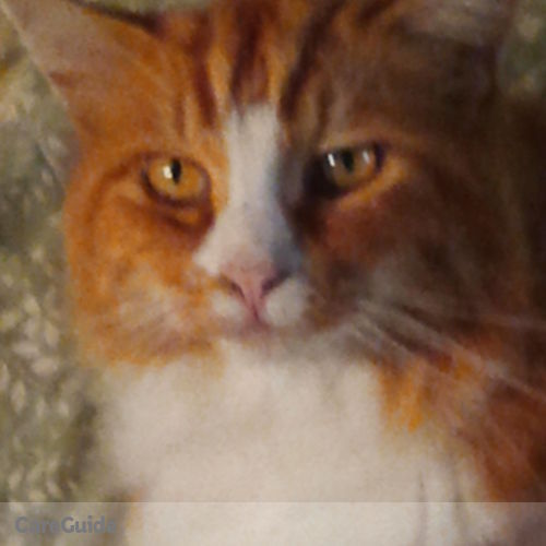 Pet Care Provider Susan Jones's Profile Picture