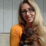 Available: House Minder and Qualified Pet Sitter in Durango, Colorado
