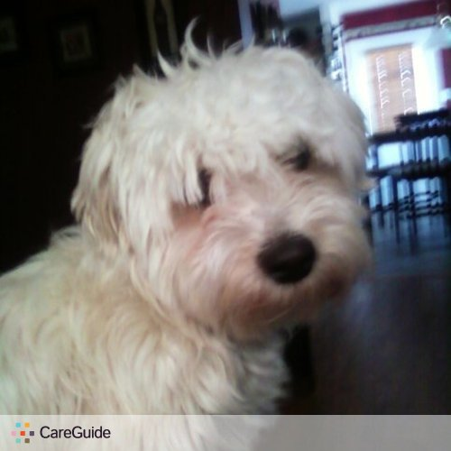 Pet Care Provider Linda Gabalis's Profile Picture