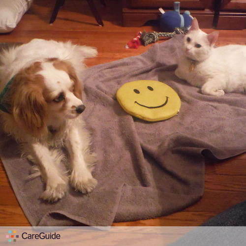 Pet Care Provider Lorraine C.'s Profile Picture