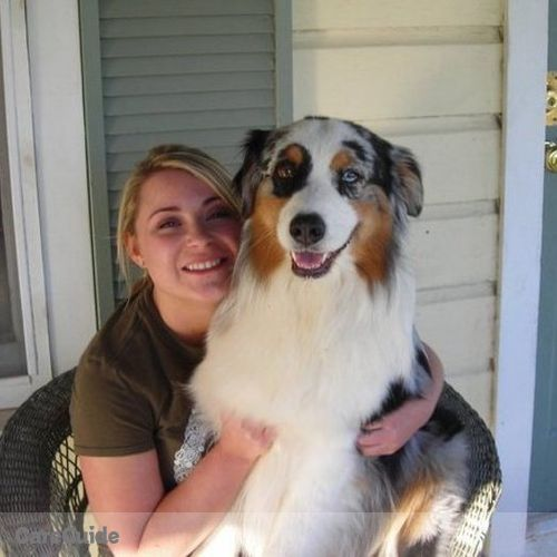 Pet Care Provider Shanna Gordon's Profile Picture