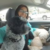 I am a experienced dog walker with a clean record of 150+ dog walks, and dog sitter. I am dog owner and dog lover!