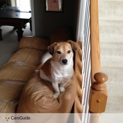 Pet Care Provider Alan Chen's Profile Picture