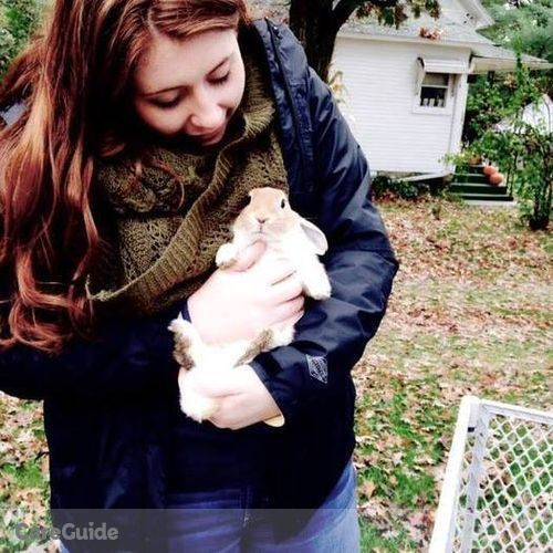 Pet Care Provider Colleen P's Profile Picture