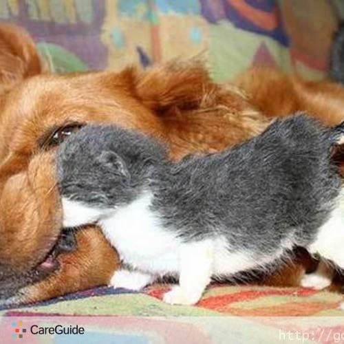 Pet Care Provider Belinda Mitchell's Profile Picture