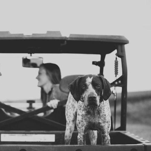 Pet Care Job Hanna Fredrickson's Profile Picture