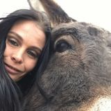 Interested In Fernley Animal Sitter Opportunity