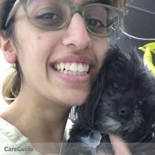 Pet Care Provider Sammi K's Profile Picture