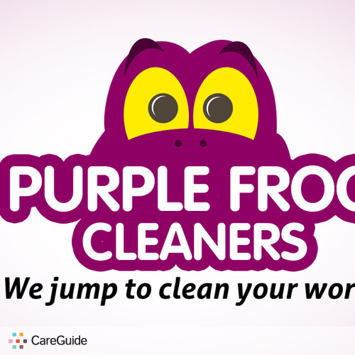 Housekeeper Provider Purple Frog Cleaners's Profile Picture