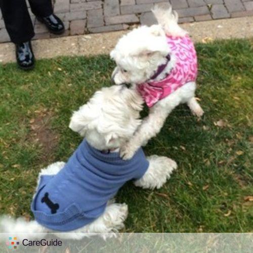 Pet Care Provider Namita G's Profile Picture