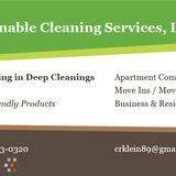 House Cleaning Company, House Sitter in Saint Petersburg