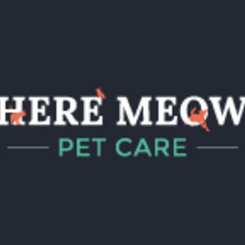 Pet Care Provider Dayna M's Profile Picture
