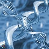Biology 11,12 & Science Tutoring