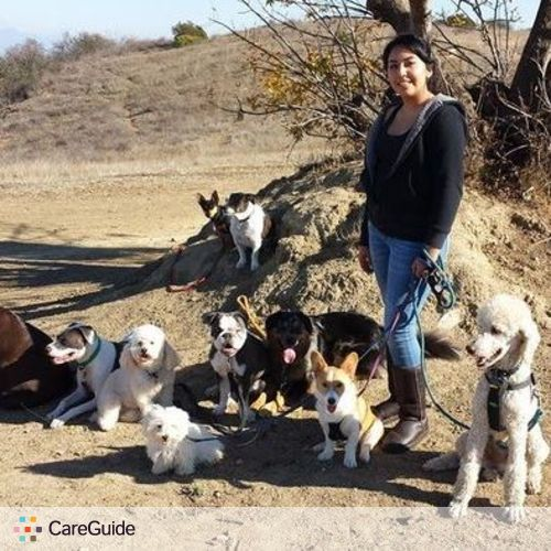 Pet Care Provider Talina Rosal's Profile Picture