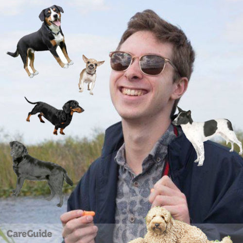 Pet Care Provider Aidan Connelly's Profile Picture