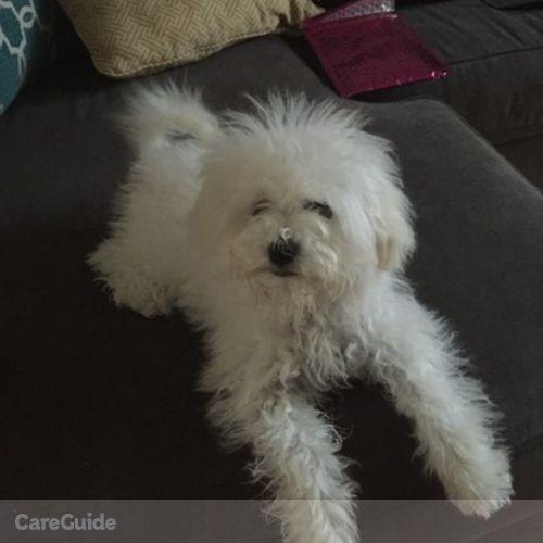Pet Care Provider Britteny W's Profile Picture