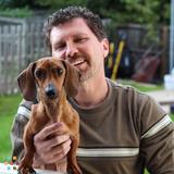 Dog Walker, Pet Sitter, Kennel in Blue Springs