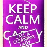 Mother/daughter team ready to give your home a mean clean!