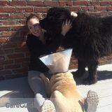 Dog Walker, Pet Sitter in Marshfield