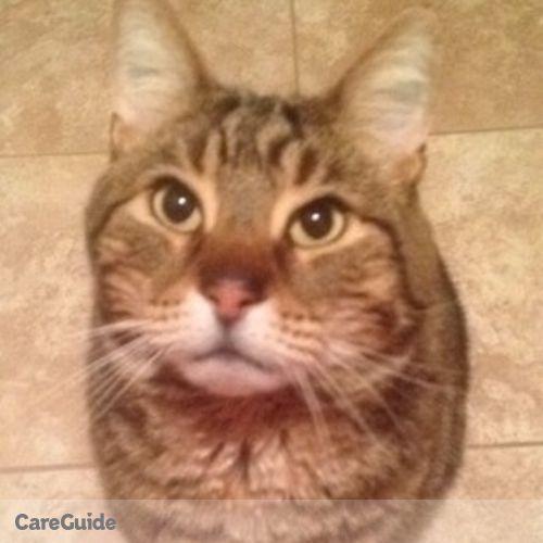 Pet Care Provider Hilary Doran's Profile Picture