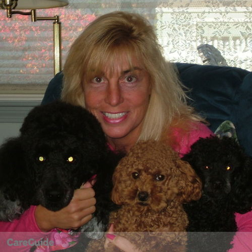 Pet Care Provider Ann Marie Regan's Profile Picture