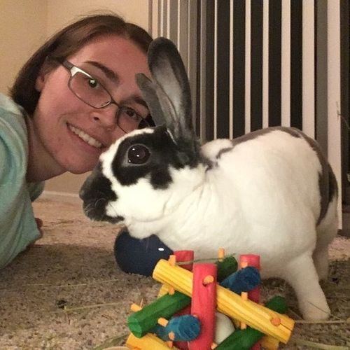 Pet Care Job Bethany Powell's Profile Picture