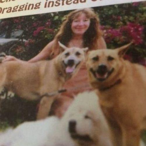 Pet Care Provider Karen / Karen Cares For Canines(LLC) C's Profile Picture
