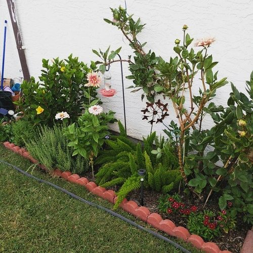 Gardener Provider Cassandra Winchell Gallery Image 2