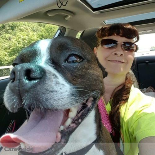 Pet Care Provider Linda N's Profile Picture