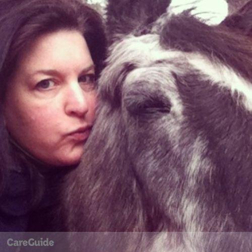 Pet Care Provider Amy Steele's Profile Picture